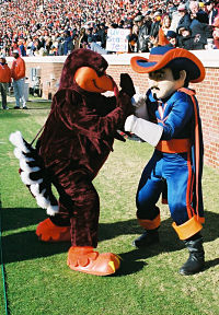 Take him Hokie Bird!
